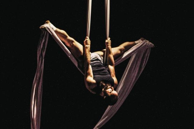 Acrobatic Conundrum- Cooper Stanton (c) Julia Nardin